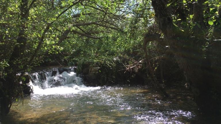 Arroyo La Guijarra